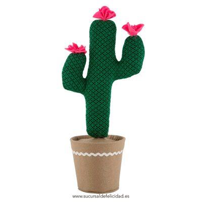 Sujeta puertas cactus