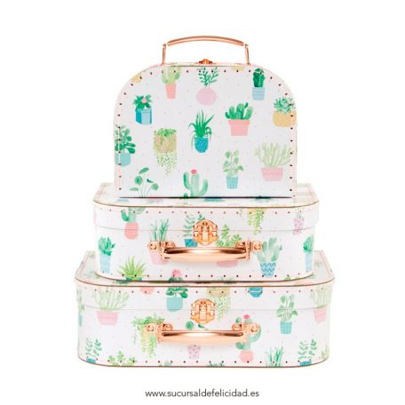 Set de Maletas Cactus