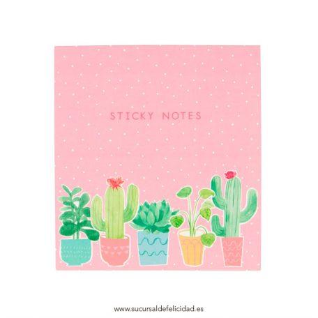 Set de notas Cactus