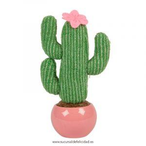 Cactus Decorativo Pink